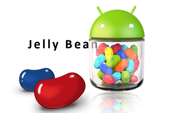 Samsung Galaxy S2 Android 4.1.2 Jelly Bean Kurulumu